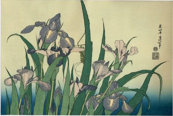 "Japanese Ukiyo-e Woodblock print, Katsushika Hokusai, ""Irises and Grasshopper"""