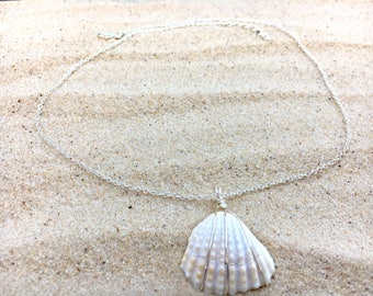White Sea shell, pendant, wire wrapped, silver colored wire, necklace, adjustable