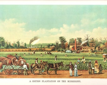 A Cotton Plantation on the Mississippi, an Extra Large print from Currier and Ives. The page is 18 3/4 inches wide and 14 inches tall.