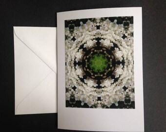 Hawthorn Flower Mandala Large Greetings Card