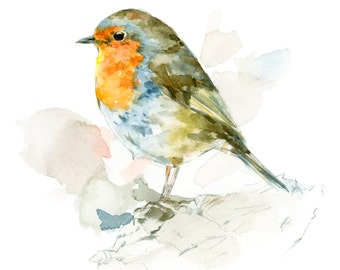 Robin watercolor painting - bird watercolor painting - 5x7 inch print - 0090