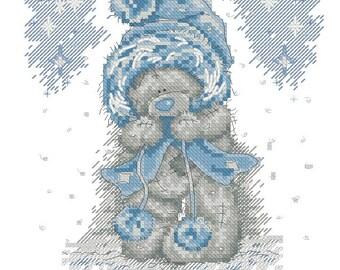Winter Teddy Bear