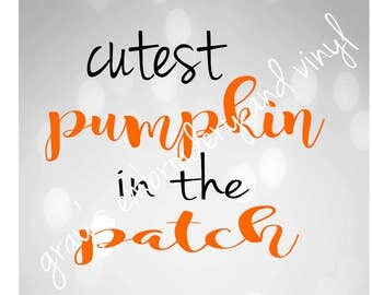 cutest pumpkin in the patch svg dxf