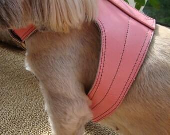 Genuine Leather Handmade Small Dog Harness