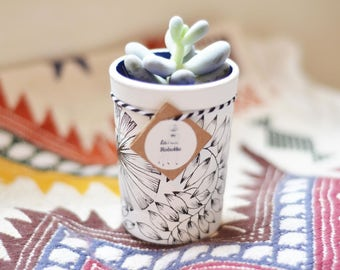 Recycled JUNGLE pot - flower - garden Majorelle inspiration - jar Terrarium planter