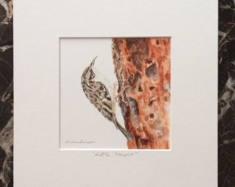 Creeper Original Acrylic Painting, small bird painting, bird art, bird painting, wildlife, wall art, woodland themed home decor, forest bird