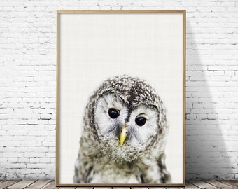 Owl Print, Nursery Wall Art, Woodlands Animal Print, Nursery Decor, Forest Animal Printable, Baby Woodland Decor, Wilderness Wall Art Print