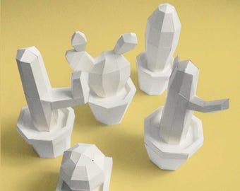 Cactus white paper sculpture to rise
