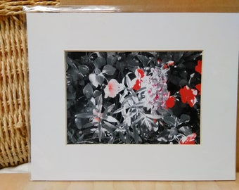 Light Red Flowers White Matte 8x10
