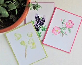 Western Wildflower Note Cards, Set of 6, Lupine / Wild Rose / Aspen / Thistle / Indian Paintbrush / Flowers Prints of Original Watercolor