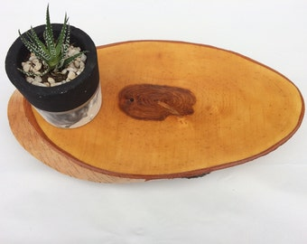 Birch wood centerpiece, wood tree slice, round tree bark slice, rustic candle centerpiece, decorative tray.