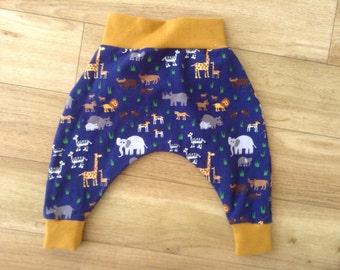 Safari harems, safari animal harems, giraffe harems, jungle animal harems, zoo animal harems, zebra harems, elephant harems, rhino harems