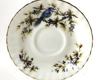 Royal Albert Woodland Series BLUE JAY. Tea Cup Saucer only