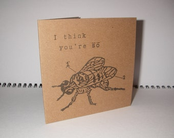 I think you're so FLY card