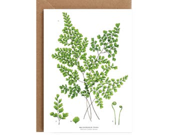 A6 Greeting Card - Maidenhair Fern