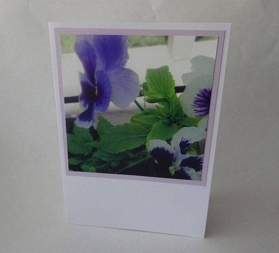 Mother's Day Card - Purple Pansy Flowers - #1628