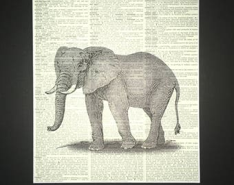 """Elephant Dictionary Page Print! Great For Kids! 11"""" X 14"""" Matted Print Buy 1 Matted Print Get 1 Reg. Print Free! Fee Domestic Shipping!"""
