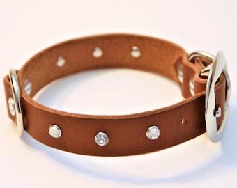 Small PLUS+ Genuine Leather Dog Collar (Walnut) 15''