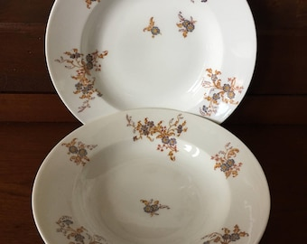 Antique Haviland & Co Soup Bowls - Limoges Porcelain Floral - Set of 2 - 1800s