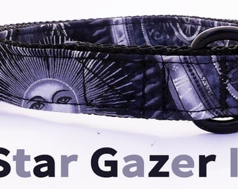 Dog Collar | Astronomy | Space | Cosmic Dog Collar| Science Dog Collar