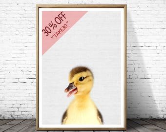 Nursery Art, Baby Animal Wall Art, Duckling Print, Nursery Decor, Duckling Photo, Nursery Printable, Farm animal prints, Nursery print