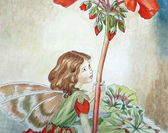 Fairy of geraniums