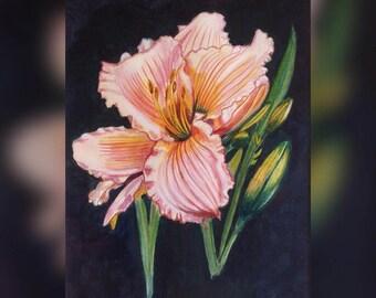 Daylily original painting.