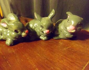 cute set or little bunnys