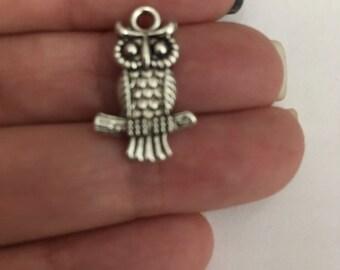 charm silver former owls