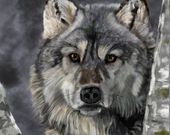 Canvas Print - Grey Wolf