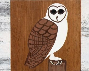 Barn Owl White Dark Brown Rustic Stained Wood Wall Décor 12x12