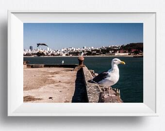 Beach Decor | Summer Decor | Beach Art | Ocean Photography | Nautical Decor Nursery | Cottage Decor | Coastal Decor | Marine Decor