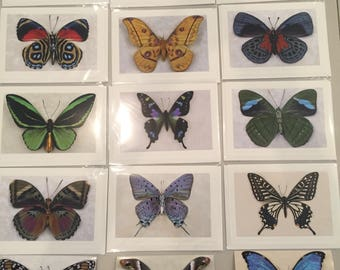 Limited Edition Butterfly Photography Cards