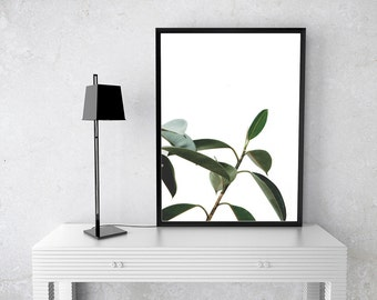 Plant, Green, Matte, Printable Wall Art, Edgy, Digital, Photography