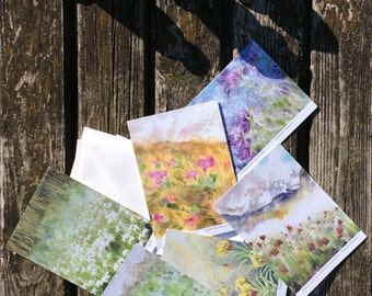 6 post cards series of field flowers