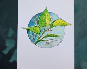 Botanical #6 Print 5x7