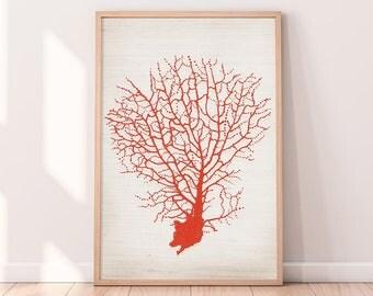 Printable Coral Art, Coral Wall Art Print, Beach Printable Art, Red Coral Print, Ocean Coastal Art, Beach House Decor, Red Coral Wall Print
