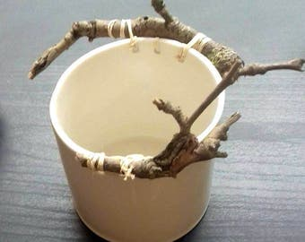 Oval porcelain pot to branches