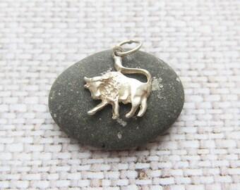 Taurus pendant Taurus gift Zodiac jewelry Taurus necklace gift for taurus zodiac sign pendant Zodiac pendant Taurus charm Taurus jewellery
