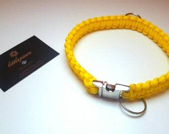 Paracord Dog Collar - One Colour