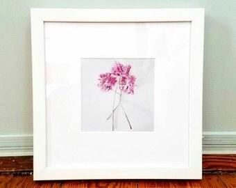 Framed Photography Print, Flower Print, Flower Photo, Flower Art, Flower Picture, Home Decor, Ready to Hang Wall Art