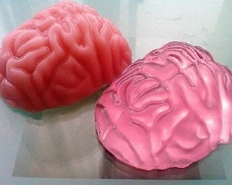 Brain Soap.Brain Shape Soap.Zombie Soap. Gag Soap. Party Favor Soap.Med School Grad Gift