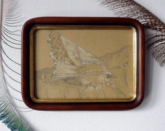 Original Drawing in an antique frame: Golden Moth, Gold, Jewels, Insect, Butterfly, Shabby Chic