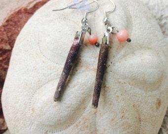 Sea Urchin Spine Earings