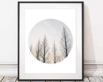 Tree Silhouette Print   Forest Trees Silhouette Photography Print Digital Download   Treeline Print Printable Wall Art   INSTANT DOWNLOAD