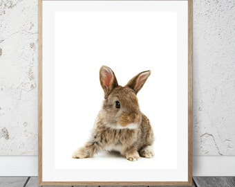Bunny, 8x10 printable, nursery art, forest animals