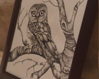 Pen & Ink Owl