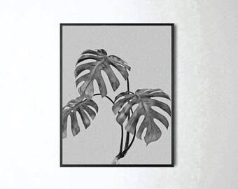 Leaf Print, Botanical Print, Scandinavain Print, Nature Prints, Black and White, Nature Art, Nature Photography, Modern Minimalist, Tropical