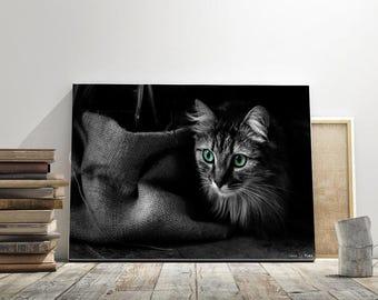 black and white cat, fine art, wall decor,photrographic print, animal, photo