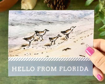 Beach or bird lover gift! Hello from Florida! Stationary set, watercolor beach shore birds, Southern notes set | Set of six blank note cards